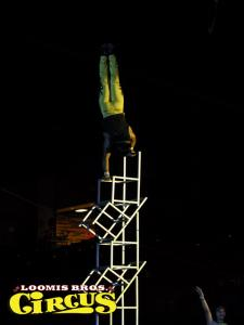 loomis-bros-circus-4